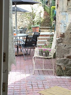 View from back door into courtyard and steps up the garden