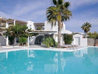 4 Bedroomed Villa /Private Pool In Mykonos, Greece-322, Ciudad de Míkonos