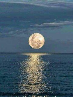 Full Moon  View from Apt Balcony.
