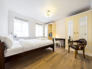 Furnished 1 BR Flats in Bayswater