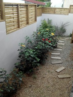 Le petit jardin vous offrira chaque jours ses hibiscus