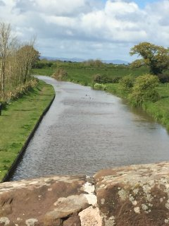 The Shropshire Union Canal across the fields from Yew Tree Farm.