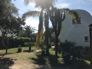El jardín desde el lado este