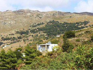 Andros- House Favolosa