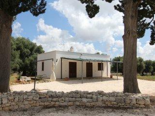 Nice house with terrace