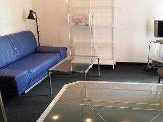 1-Zimmer-Apartment, möbliert, zentral gelegen (#5), Nuremberg