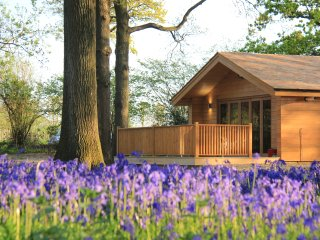 Bluebell Lodge, West Sussex
