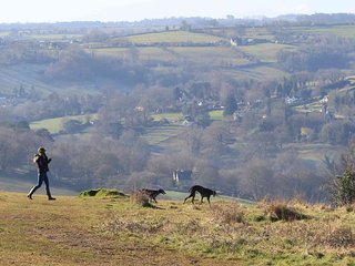 The local grassland slopes dotted with cosy traditional pubs are    perfect for walkers & their dogs