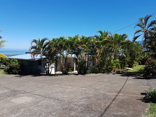 Zoiseaux Paradis Cocotier 2 Sud de la Réunion dans les Hauts de Saint Pierre