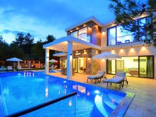 Villa Avangard
