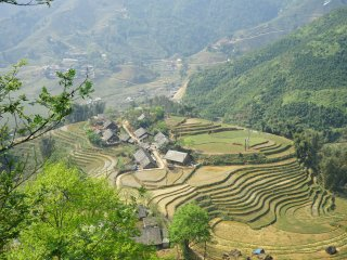 Vietnam long term rental in Lao Cai Province, Lao Cai