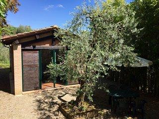 LA CASINA - Cottage immerso tra gli ulivi - Podere San Giorgio