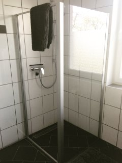 helles Badezimmer mit Glaswanddusche