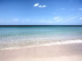 Walk or bike to world famous beaches from this Naples gem!