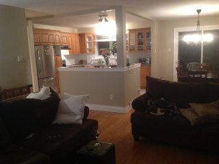 Newly renovated fully loaded beautiful open concept home 4 bedrooms huge yard