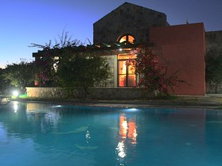 Gümüşlük Beautiful Nature Stone Villa With Swimming Pool # 536