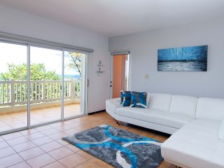 #7 LuxurIous 3Br/2Ba Beachfront Apt - Villa Pesquera, Montones, Jobos, Shacks