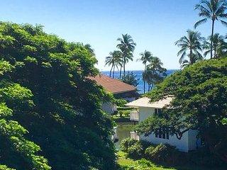 Lovely Remodeled Garden Deluxe Kiahuna Condo Partial Ocean View!, Poipu