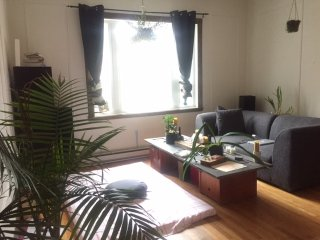 Beautiful 1 bedroom Apartment in downtown Montreal