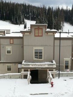 SnowBound - Two-Bedroom/Two Bath  Creekside Condo - Pet Friendly Too!