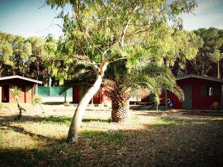 falanto Camping Village, Palagiano