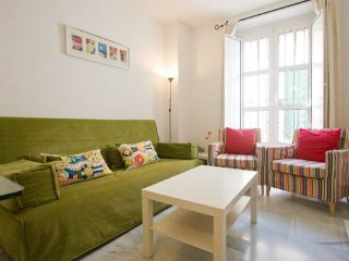 Flamenco apartment in Casco Antiguo {#has_luxurio…, La Campana