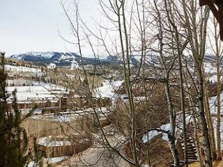 Renovated and Comfy 3BD 2BA Snowmass Condo Minutes to the Lifts