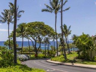 Maui Kamaole J-201 - Kihei