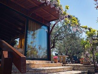 Villetta con antica pajara immersa in oliveto nel Salento