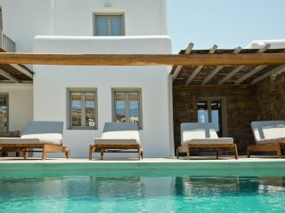 M Mykonos Villas | 5 Bedroom Villa with Private Pool and Gym (M ONE)
