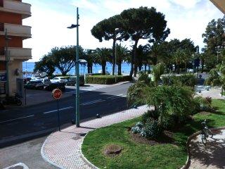 Magnifique appartement F2 a 50 metres de la plage