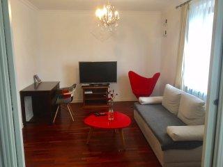 Luxury apartment in center