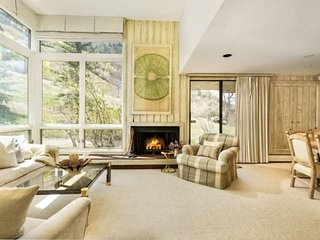Ski-In/Out Aspen Mtn. Great Views. Wood-Burning Fireplace. Elevator Access. Gara