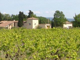 MAS au pied du Mont Ventoux en Provence