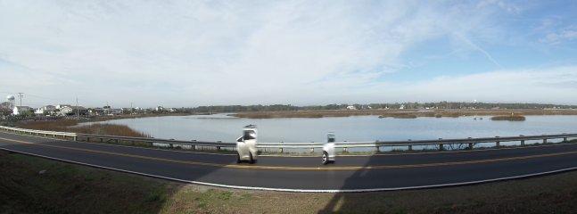 Panoramic view of the marsh