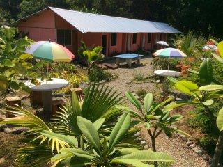 Beachpacker Hostel Manuel Antonio - Double-Twin Room