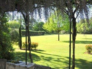 Les Cigales, Saint-Remy-de-Provence