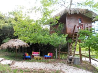 The Tree House at vale da Silva Villas rural farm