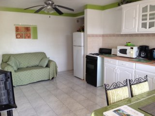 Spacious I bedroom Premium Apartment, Near to Miami Beach & Many Tourist Venues