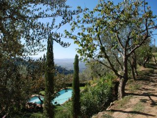 2 bedroom Apartment in Vinci, Tuscany, Italy : ref 5475130