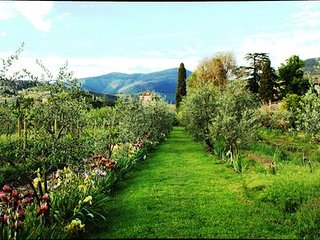 Farm in Tuscany, Florence Apartments Garden Pool, home restaurant, wine tastings, Sesto Fiorentino
