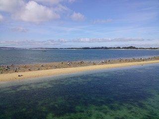Con la marea baja se pueden ver desde el puente a las mariscadoras en su labor