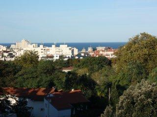 BIARRITZ OCEAN VIEW, Surf & Turf, Biarritz