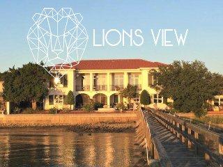 Lion's View