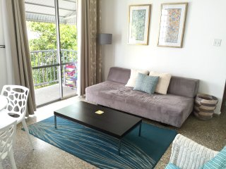Two Bedroom steps from beach, parking fcfs, San Juan