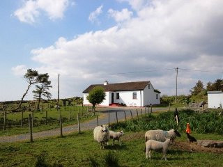 Colemans Cottage, Cashel - Tranquil holiday traditional cottage set in a