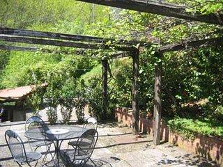 Rustico di campagna immerso nel verde degli ulivi di Celle dei Puccini