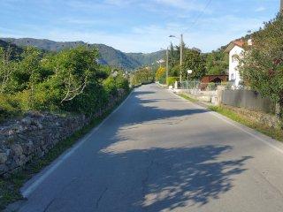 Strada Principale di fronte alla proprietà