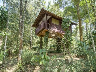Blissful tree house stay for two, ideal for couples