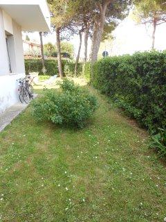 zona laterale del giardino
